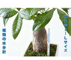 水枯れ予防にサスティー Lサイズ 1本 グリーン ホワイト 6〜12号鉢 直径 18〜36センチくらいの鉢用 運ぶのに力が要るくらいの鉢用 観葉植物 コチョウラン バラ ハーブ 多肉植物 シクラメン 花鉢 鉢物 植物の水分計 水分チェッカー 水やりチェッカー