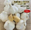 商品レビュー投稿で肥料プレゼント先着12名 青森県産 にんにく種 1キロ ニューホワイト六片 Mサイズ粒 等級A (約16〜1…