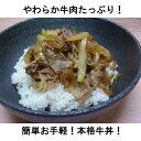 牛丼の素デラックス(185g×10個)【RCP】