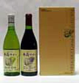 【誕生日】【ギフト】NO7 井筒ワイン 2本 720ml専用