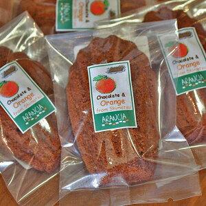 米粉で作ったチョコレートマドレーヌ(焼き菓子)〜小麦粉不使用で軽い食感