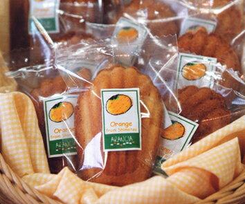 有田市産ハウスみかんのマドレーヌ(焼き菓子)
