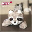 Zk nc mg raccoon 1