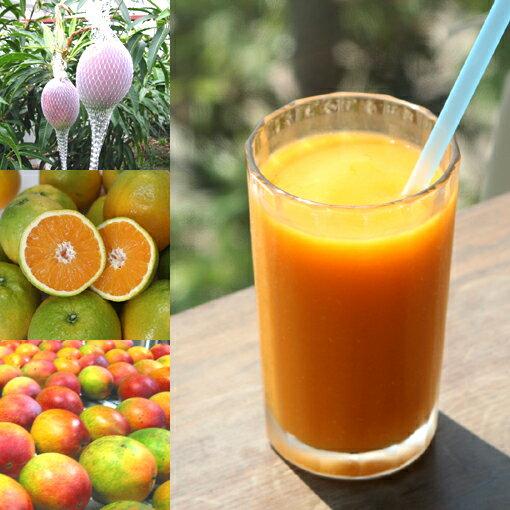 和歌山産「トロピカルスムージー」農家さんから直接分けてもらうくだもの(和歌山産完熟マンゴー+夏のオレンジ)+バナナのフローズンフルーツジュース・冷凍果物