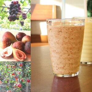 【冷凍便】和歌山産「秋フルーツミックス・スムージー」農家さんから直接分けてもらうくだもの(イチジク+ぶどう+リンゴ+オレンジ+みかんの花の蜂蜜)のフローズンフルーツジュー