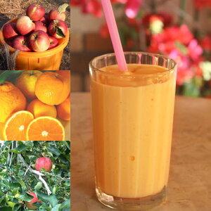 【冷凍便】和歌山産「みかん&りんごスムージー」農家さんから直接分けてもらうくだもの(みかん+オレンジ+りんご+レモン+みかんの花の蜂蜜)のフローズンフルーツジュース・冷凍
