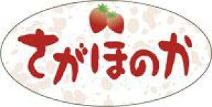 販促シール 食品シール 催事シール デコシール ギフトシール 業務用シール【青果 いちご さがほのか LZ632(500枚入)】