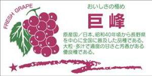販促シール 食品シール 催事シール デコシール ギフトシール 業務用シール【青果 ぶどう 巨峰 LZ376(400枚入)】
