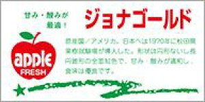 販促シール 食品シール 催事シール デコシール ギフトシール 業務用シール【青果 りんご ジョナゴールド LZ402(300枚入)】