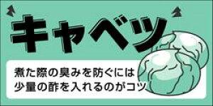 販促シール 食品シール 催事シール デコシール ギフトシール 業務用シール【青果 キャベツ LZ419(300枚)】