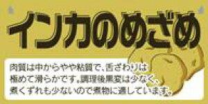 販促シール 食品シール 催事シール デコシール ギフトシール 業務用シール【青果 じゃがいも インカのめざめ LZ666(300枚)】