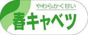 販促シール 食品シール 催事シール デコシール ギフトシール 業務用シール【青果 春キャベツ LZ268(500枚)】