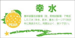 販促シール 食品シール 催事シール デコシール ギフトシール 業務用シール【青果 梨 幸水 LZ393(300枚入)】