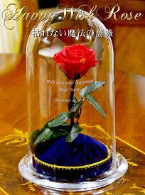 美女と野獣のバラ お名前とメッセージの彫刻込 バラ プロポーズ ディズニー 枯れない花 ギフト 美女と野獣 誕生日 プレゼント 結婚式 結婚記念日 記念日 贈り物 女性 彼女 妻 ブリザードフラワー 花 フラワー お祝い 結婚祝い 入学祝い 卒業祝い 母の日