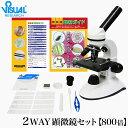 【クーポンあり】新日本通商 学習用 2Way 顕微鏡 800LS 40〜800倍 生物顕微鏡と反射顕微鏡 顕微鏡観察ガイド付属 | マ…