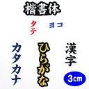 ワッペン アップリケ オーダーワッペン 刺繍 ひらがな 漢字 カタカナ 一文字 1文字 複数文字 名前 企業/社名 ネーム …