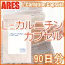L-カルニチンカプセル 90日【メール便送料無料!(代金引換・日時指定不可)】