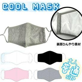 クールマスク 1枚入 フリーサイズ カラー マスク 夏用 雨 夏 対策 涼しい 通勤 黒 仕事 接触冷感 涼しい 雨 洗える 立体 普通サイズ 布マスク 通勤 通学 アウトドア 3D カジュアル グレー ブラック 夏対策