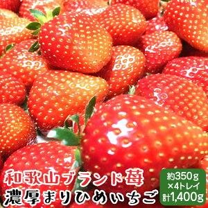 【送料無料】和歌山ブランド苺 濃厚まりひめいちご 4トレイ(2トレイ×2箱)
