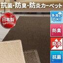 日本製 防炎 抗菌 防臭 吸湿 ループカーペット 江戸間6畳 261×352 ホットカーペットカバー 国産 ラグ マット 長方形 ウェルバ 平織り