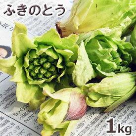 ご注文日4/5分出荷中天然山菜・ふきのとうまとめて1kg(大小バラ詰め)※送料別(クール便)