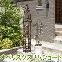 【送料無料】オベリスクスリムショート GSTR-RC15S 【D】タカショー [バラ 薔薇 クレマチス オベリスク ] P19Jul15