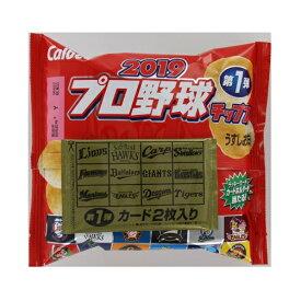 カルビー 2019プロ野球チップス 22g×24個 【送料無料】