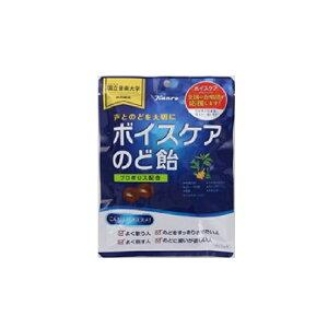 カンロ ボイスケアのど飴 70g×12個 【送料無料】