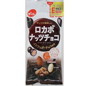 【送料無料】でん六 Eサイズプラスロカボナッツチョコ 34g×20個 【送料無料】