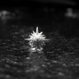 ピアス 【NO.2】 シルバー 中太陽神 ピアス 素材: SV925