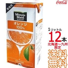 ミニッツメイド オレンジ 100% 1L 紙パック × 12本 (6本×2ケース) 業務用 1000ml 濃縮果汁還元 コカ・コーラ Coca Cola 【同梱不可】