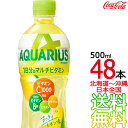 【日本全国 送料無料】アクエリアス 1日分のマルチビタミン 500ml × 48本(24本×2ケース) AQUARIUS スポーツドリン…