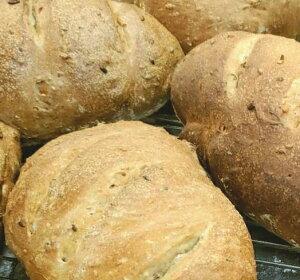 【冷凍パン】お試し特価 全粒粉使用 焼き上がり冷凍パン バケット(200g×3個入)約16cm 業務用 黒パン【返品不可】