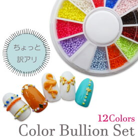 【訳アリ品】カラーブリオンセット 12色 サークルケース入り 【メール便可】ブリオン ネイル