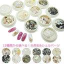 12種類から選べる!天然石&シェルパーツ ケース入り ネイル ハンドメイド アクセサリーパーツ にオススメ! レジン …