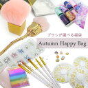 《限定100セット》選べるブラシ入り!! ArkNail Autumn Happy bag ネイルブラシが絶対入る! 使えるパーツ厳選! 豪華ネ…