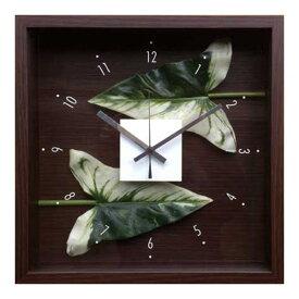 ウォールクロック 壁掛け時計 掛け時計 造花 インテリア 玄関 プレゼント ギフト 壁掛け 時計 かわいい 北欧 贈り物 四角 壁飾り 緑 正方形 おしゃれ リビング 寝室 グリーン リーフパネル 人工植物 立体 植物 CDC-51813 Design Clock Leaf Anthurium leaf