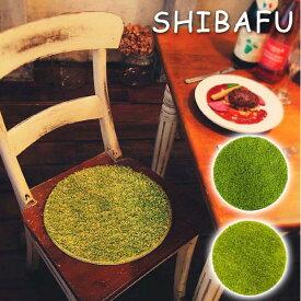 チェアパット 円形 チェアパッド ファブリック 丸型 椅子用 丸型 おしゃれ 緑 グリーン 洗える 洗えるラグ カラフル チェアマット 椅子 クッション