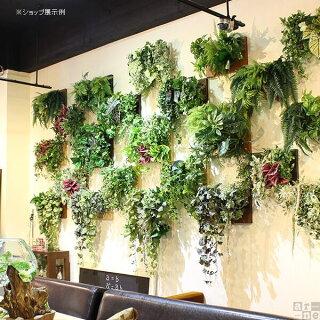 人工観葉植物光触媒観葉植物リアルフェイクグリーンウォールデコウォールパネルアートパネルおすすめインテリア新築祝いリーフパネル壁掛けBotanical_c.class30グリーングリーンパネル壁贈り物お祝い北欧ウォールグリーン壁面壁飾りアートボード