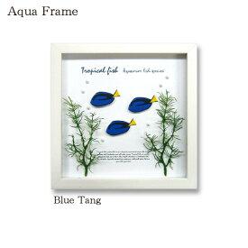 壁掛け アートフレーム パネル 魚 インテリアパネル 熱帯魚 ハギ アートパネル フレーム アクア アクアリウム 壁飾り 飾り イラスト 立体パネル 装飾 壁面装飾 アクアフレーム おしゃれ かわいい 天然木 壁面 Aqua Frame Blue Tang