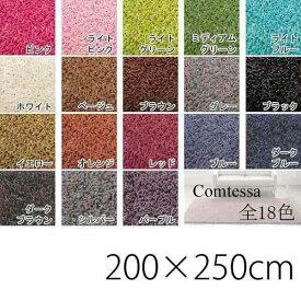 ラグ デザイン モダン 北欧デザインラグ カーペット オシャレインテリア デザインラグ フロアマット リビングマット インテリアマット アクセントラグ アクセントマット ラグマット カラー Comtessa 200×250 cm 長方形 絨毯 敷物 シンプル 一人暮らし