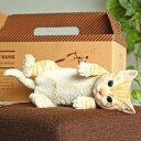 貯金箱 ねこ 置物 ネコ おもしろ雑貨 かわいい おしゃれ 小物