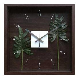 掛け時計 ウォールクロック 壁掛け時計 壁掛け アート 造花 四角 掛時計 壁時計 おしゃれ インテリア ウォールインテリア ウォールディスプレイ ウォールアート ウォールデコ 緑 北欧 リビング 寝室 花 CDC-51812 Design Clock Leaf Philodendron cv.kookaburra