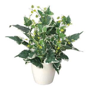 光触媒 観葉植物 ホーランドアイビー 高さ48cm テーブルタイプ ミニ ミニ観葉植物 アートグリーン フェイクグリーン 玄関 光の楽園 人工植物 ギフト 新築祝い プレゼント 友人 花 鉢植え 造花