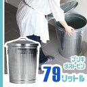 【50%OFF】 ゴミ箱 ブリキ製 ごみ箱 かわいい ふた付き おしゃれ 79リットル 79L フタ付き 蓋付き ダストボックス ブリキ ダストビン ゴミ箱 ふた付き ダストカン ブリキカン ごみ入れ