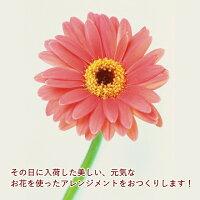 【あす楽14時まで】【送料無料】【生花】【アレンジメント】色を選んでおまかせ5a誕生日お祝い結婚式展示会楽屋花出産お祝い記念日ギフト母の日敬老の日お見舞いプレゼントフラワーギフト