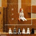 【7月再販予定】 奇譚クラブ 座る猫 【全6種セット】