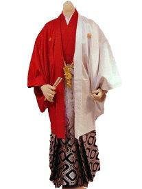 【レンタル】No.85-No.335 Lilianne 紅白ツートン 卒業式 成人式 男性用 紋服セット レンタル【店頭受取対応商品】