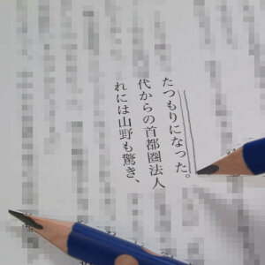 指がおさまるくぼみ付き鉛筆3本セット。書き方矯正向き。HB。入学 小学生 持ち方 勉強 文具 学習