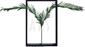 リーフパネル リーフアート 壁掛け アートパネル インテリア タペストリー リーフフレーム ウォールアート アートボード モノトーン モノクロ アンティーク シンプル モダン 北欧 造花 おしゃれリーフパネル アブラヤシ